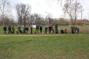 séance de dressage canin sur Vincennes