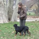 promener son chien sur Paris